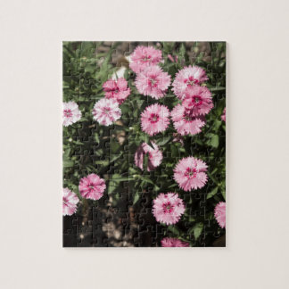 field of pink flowers jigsaw puzzle