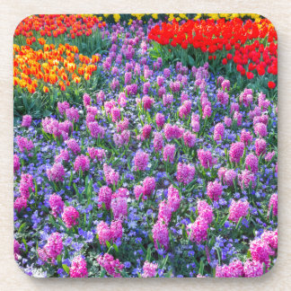 Field of pink hyacinths and red tulips drink coaster