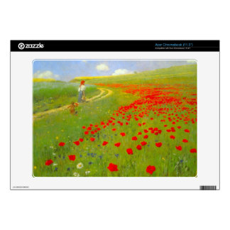 Field of Poppies by Pal Szinyei Merse Acer Chromebook Decals