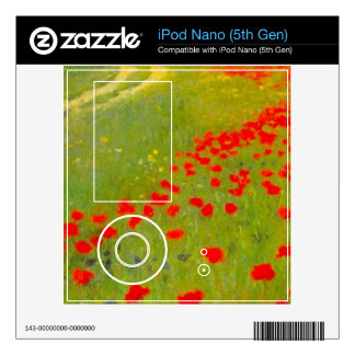Field of Poppies by Pal Szinyei Merse Skin For The iPod Nano