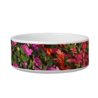 Field of purple pink orange impatients flowers bowl