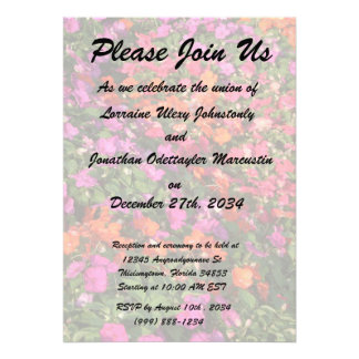Field of purple pink orange impatients flowers invite