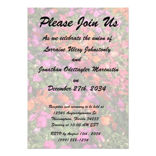 Field of purple pink orange impatients flowers invite