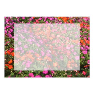 Field of purple pink orange impatients flowers custom announcements