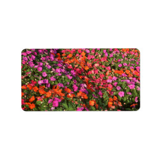 Field of purple pink orange impatients flowers address label