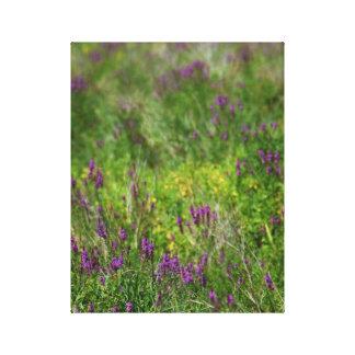 Field of Purple Wildflowers Photo Canvas