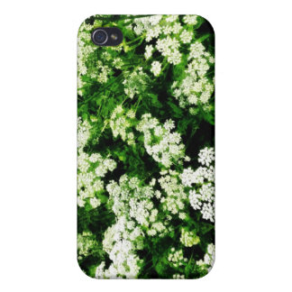 Field of Queen Anne s Lace iPhone 4/4S Cases