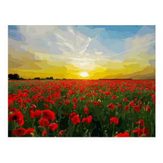Field of red Poppies with Sunrise Postcard
