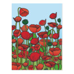 Field of red Poppy flowers Post Cards