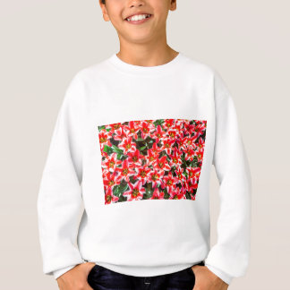 Field of red tulips from above sweatshirt