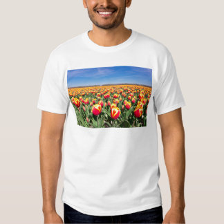 Field of red yellow tulips with blue sky shirt