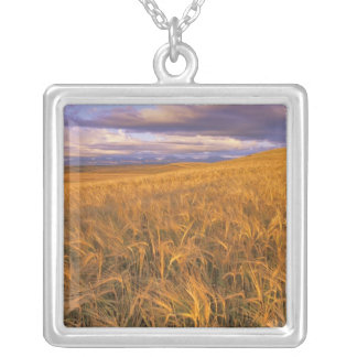 Field of Ripening Barley along the Rocky Square Pendant Necklace