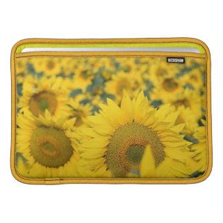 "Field of Sunflowers 11"" MacBook Sleeve"