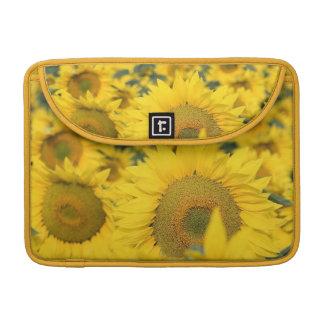 """Field of Sunflowers 13"""" MacBook Sleeve Sleeves For MacBooks"""