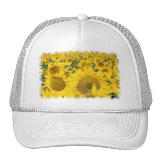 Field of Sunflowers Baseball Hat