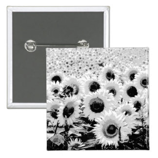 Field of Sunflowers - black white and grey Pinback Buttons
