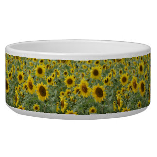 Field of Sunflowers Bowl