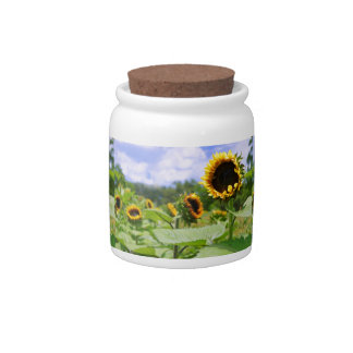 Field of Sunflowers Candy Jars