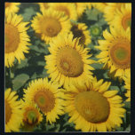 "Field of Sunflowers Cloth Napkin<br><div class=""desc"">Field of Sunflowers</div>"