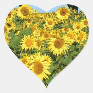 Field of sunflowers heart sticker