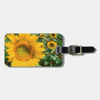 Field Of Sunflowers. Heidleberg District Bag Tag