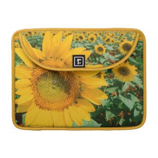 Field Of Sunflowers. Heidleberg District MacBook Pro Sleeve