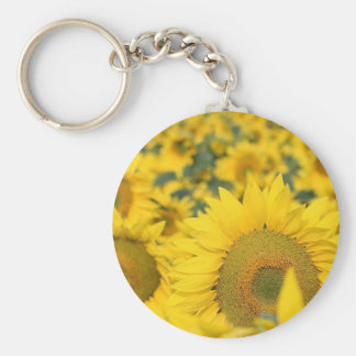 Field of Sunflowers Keychain