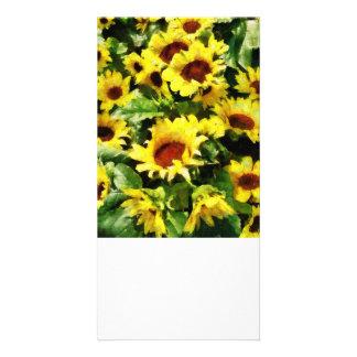 Field of Sunflowers Custom Photo Card