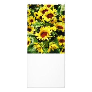 Field of Sunflowers Rack Card