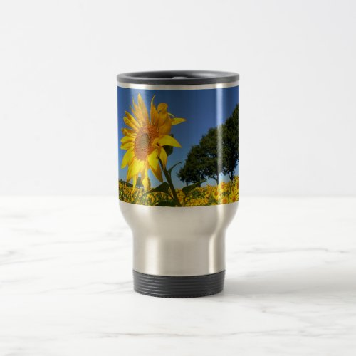 Field Of Sunflowers, Sunflower 02 Travel Mug