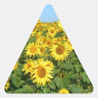 Field of sunflowers triangle sticker