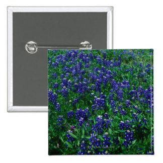 Field of Texas Bluebonnets Pinback Button