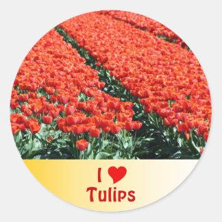Field of tulips classic round sticker