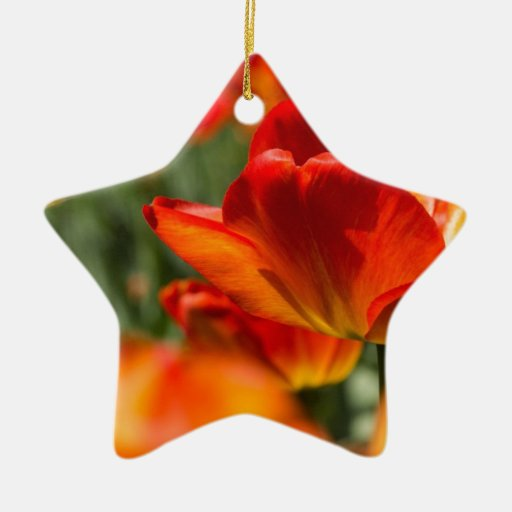 Field of Tulips Double-Sided Star Ceramic Christmas Ornament
