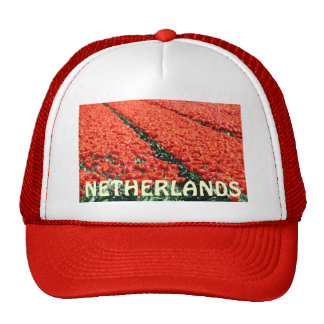 Field of tulips mesh hat