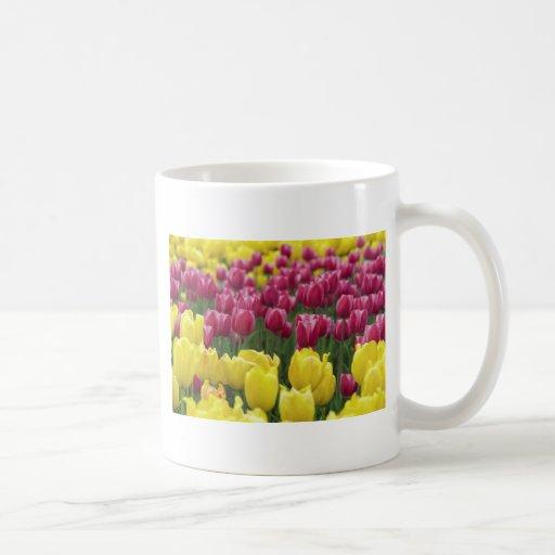 Field of Tulips Mugs