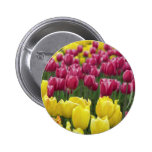 Field of Tulips Pinback Button