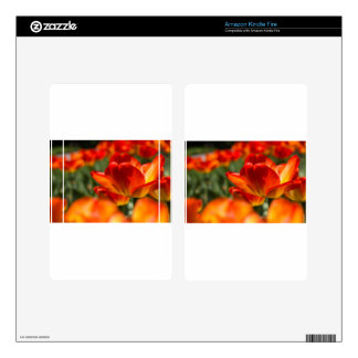 Field of Tulips Kindle Fire Skins
