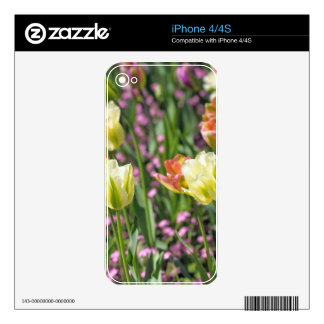 Field of tulips skin for iPhone 4