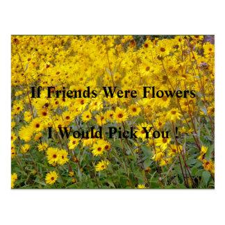 Field Of Vibrant Yellow Flowers Friendship Postcard