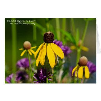 Field of Wildflowers Card