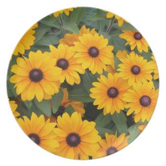 Field of yellow daisies melamine plate