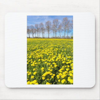 Field of yellow dandelions in grass with tree line mouse pad