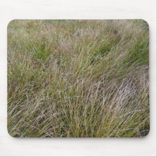 Field of Yellow Dry Grass and Hedge Mouse Pad