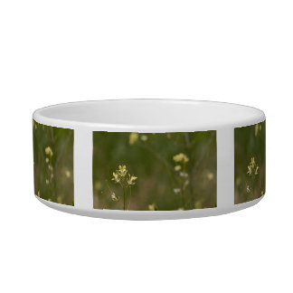 Field of Yellow Flowers Bowl