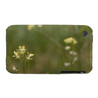 Field of Yellow Flowers Case-Mate iPhone 3 Case