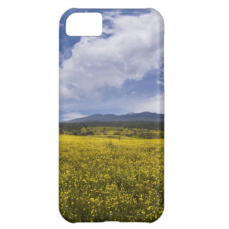 Field of Yellow Flowers Cover For iPhone 5C