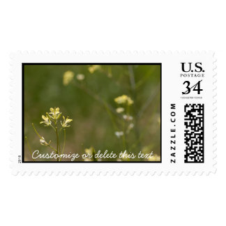 Field of Yellow Flowers; Customizable Stamp