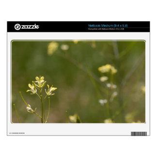 Field of Yellow Flowers Medium Netbook Decal