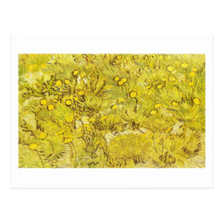 Field of Yellow Flowers, Vincent van Gogh Postcard